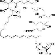 Structure Nystatin min. 4 400 units/mg_research grade, Ph. Eur.