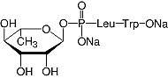 Structure Phosphoramidon_research grade