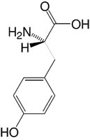 Structure L-Tyrosine_analytical grade, Ph. Eur.