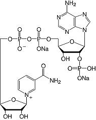 结构-β-烟酰胺腺嘌呤二核苷酸磷酸酯&#183; Na <sub> 2 </ sub> -salt_研究级