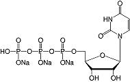 结构尿苷-5'-三磷酸钠&#183; Na <sub> 3 </ sub> -salt_研究级